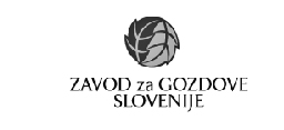 Partner company logo - Slovenian forests institute